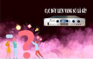 cuc-day-cong-suat-lien-vang-so-dd